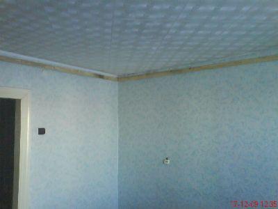 отделка потолка сайдингом